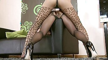 Best sucking sex video from tweeteround com